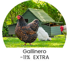 product-detail-advertisement  Gallinero